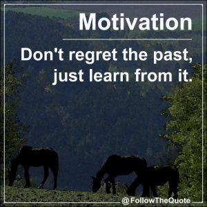 Don't regret the past, just learn from it.
