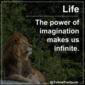 The power of imagination makes us infinite.
