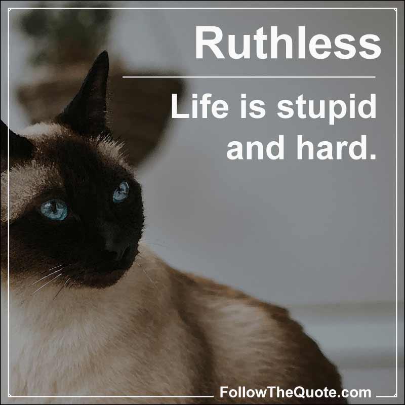 Slogan: Life is stupid and hard.